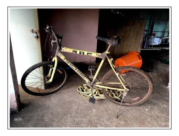 Morning Cycling 000