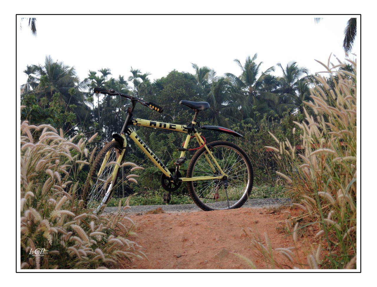 Morning Cycling 001