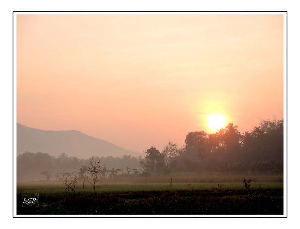 Morning Cycling 004