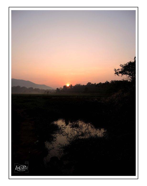 Morning Cycling 012