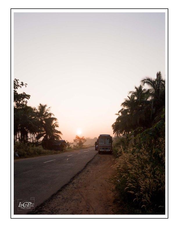 Morning Cycling 014