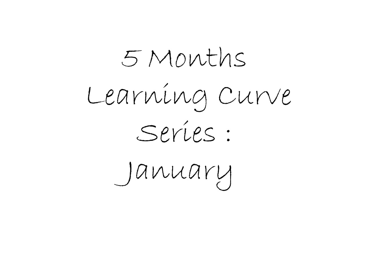 5 Months Learning curve: January