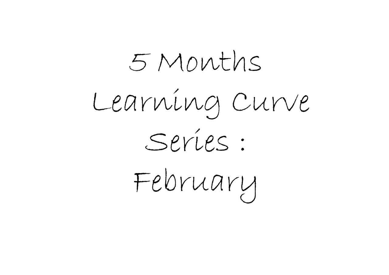 5 Months Learning curve: February